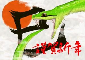 2013!蛇年!!